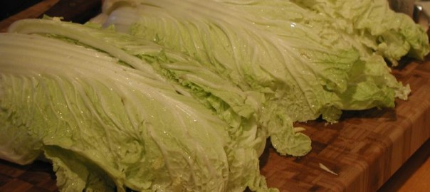 can guinea pigs eat napa cabbage